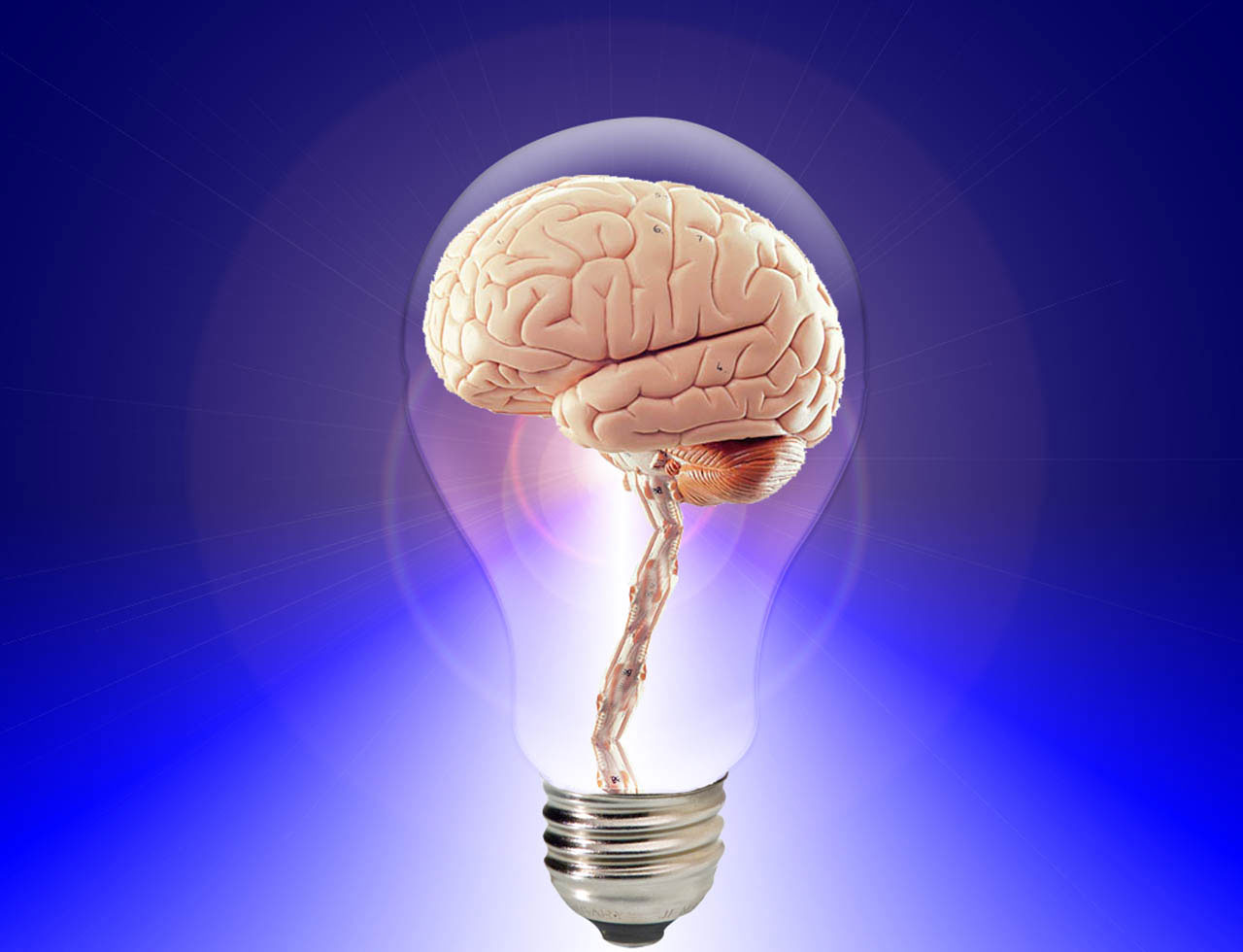 brain-light-bulb