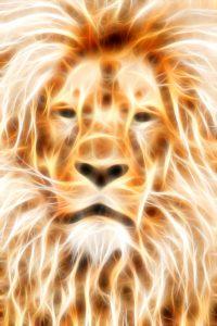 Flaming Lion