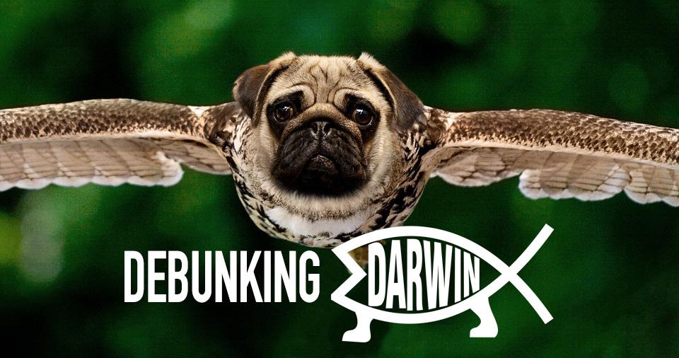 Debunking Darwin
